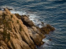 Free Sea Shore Royalty Free Stock Photography - 7961467