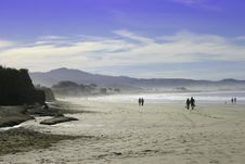 Free California Beach Royalty Free Stock Images - 7961479