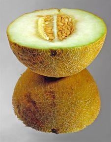 Melon. Stock Photos