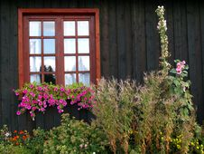 Free House And Flowers Royalty Free Stock Photo - 7962905