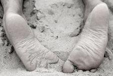 Free Feet Stock Photo - 7963680