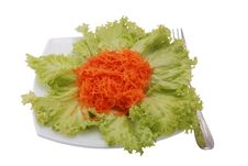 Free Salad With Carrot Royalty Free Stock Images - 7966679