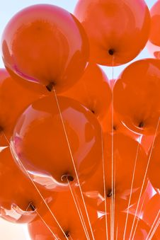 Free Red Balloon Royalty Free Stock Images - 7967369