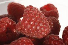 Free Raspberries Stock Photos - 7968113