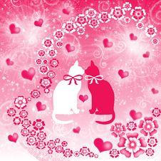 The Valentine S Day Stock Photos