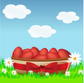 Free Eggs Stock Photo - 7976110