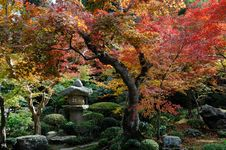 Free Japanese Garden Stock Photos - 7973363