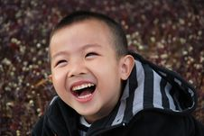 Free Young Boy Royalty Free Stock Photo - 7974515