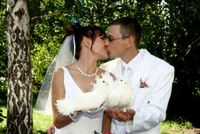 Free Groom And Bride Kiss Royalty Free Stock Photos - 7975448
