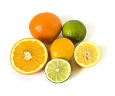Citrus Plants On White Royalty Free Stock Images