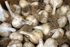 Free Garlic Royalty Free Stock Photo - 7977855