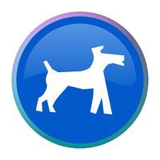 Free Dog Web Button Stock Photos - 7978213