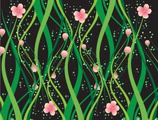 Free Floral Background Stock Photography - 7978462