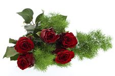 Free Red Roses Against White Background Royalty Free Stock Photo - 7978875