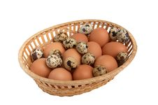 Free Differents Eggs In The Basket. Stock Photos - 7980193