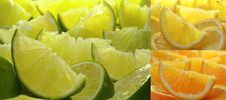 Free Citrus Fruit Collection Royalty Free Stock Photos - 7982978