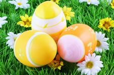 Free Easter Eggs. Royalty Free Stock Photos - 7983568