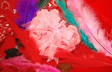 Free Valentines Box And Color Feathers On The Red Royalty Free Stock Image - 7984336