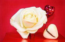 Free Passionate Love - White Rose And Glowing Hearts Royalty Free Stock Photography - 7985837