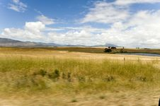 Free Canola Fields In The Western Cape Stock Photos - 7986743