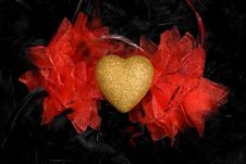 Golden Heart Over Black Feathers Background Royalty Free Stock Images