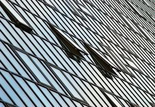 Free Glass Office Block Stock Photography - 7988202