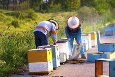 Free Beekeepers Stock Photo - 7988930
