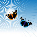 Free Two Butterflies In Sky Royalty Free Stock Images - 7992099