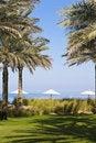 Free Luxurious Spa Garden Royalty Free Stock Photography - 7998587