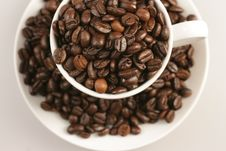 Free Coffee Cup And Beans On White Background Royalty Free Stock Photography - 7990347