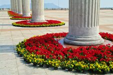 Free Flowers In Century Plaza Stock Photography - 7990752