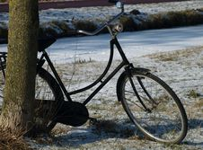 Free Bike Royalty Free Stock Photo - 7992245