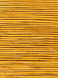 Free Bamboo Stalks Royalty Free Stock Photo - 7992595