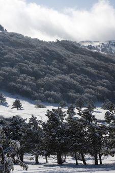 Free Mountain Landscape Winter Stock Photos - 7993563