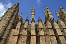 Free La Seu Cathedral Royalty Free Stock Photos - 7994838
