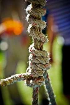 Free Knot Stock Photo - 7995510