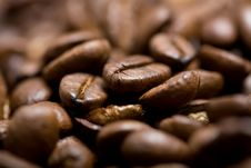 Freshly Roasted Coffee Beans On Sackcloth Royalty Free Stock Photography