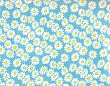 Free Daisy Background. Stock Images - 7996074