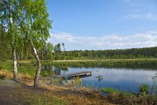 Free Lake In The Forest Stock Photos - 7996123