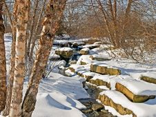 Free Snowy Stream Royalty Free Stock Photography - 7996237