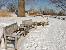 Snowy Benches Royalty Free Stock Photos
