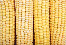 Free Freshly Harvested Corn Background, Close Up Royalty Free Stock Image - 7996736