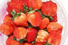 Free Fresh Strawberry Royalty Free Stock Photography - 7996877