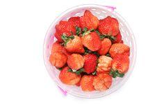 Free Fresh Strawberry Stock Images - 7996904