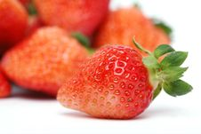 Free Fresh Strawberry Stock Photo - 7997250
