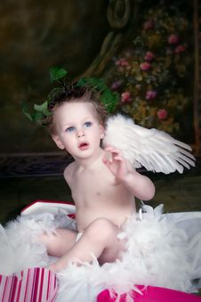 Free Cherub Royalty Free Stock Photography - 7997547