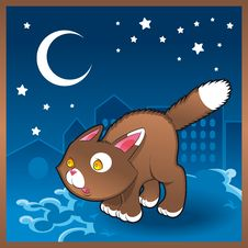 Baby Cat In The Night Royalty Free Stock Photo
