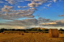 Free Bales Royalty Free Stock Photos - 7999228