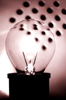 Free Sepia Bulb Royalty Free Stock Photography - 81227