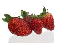 Free Strawberries IV Royalty Free Stock Photos - 85988